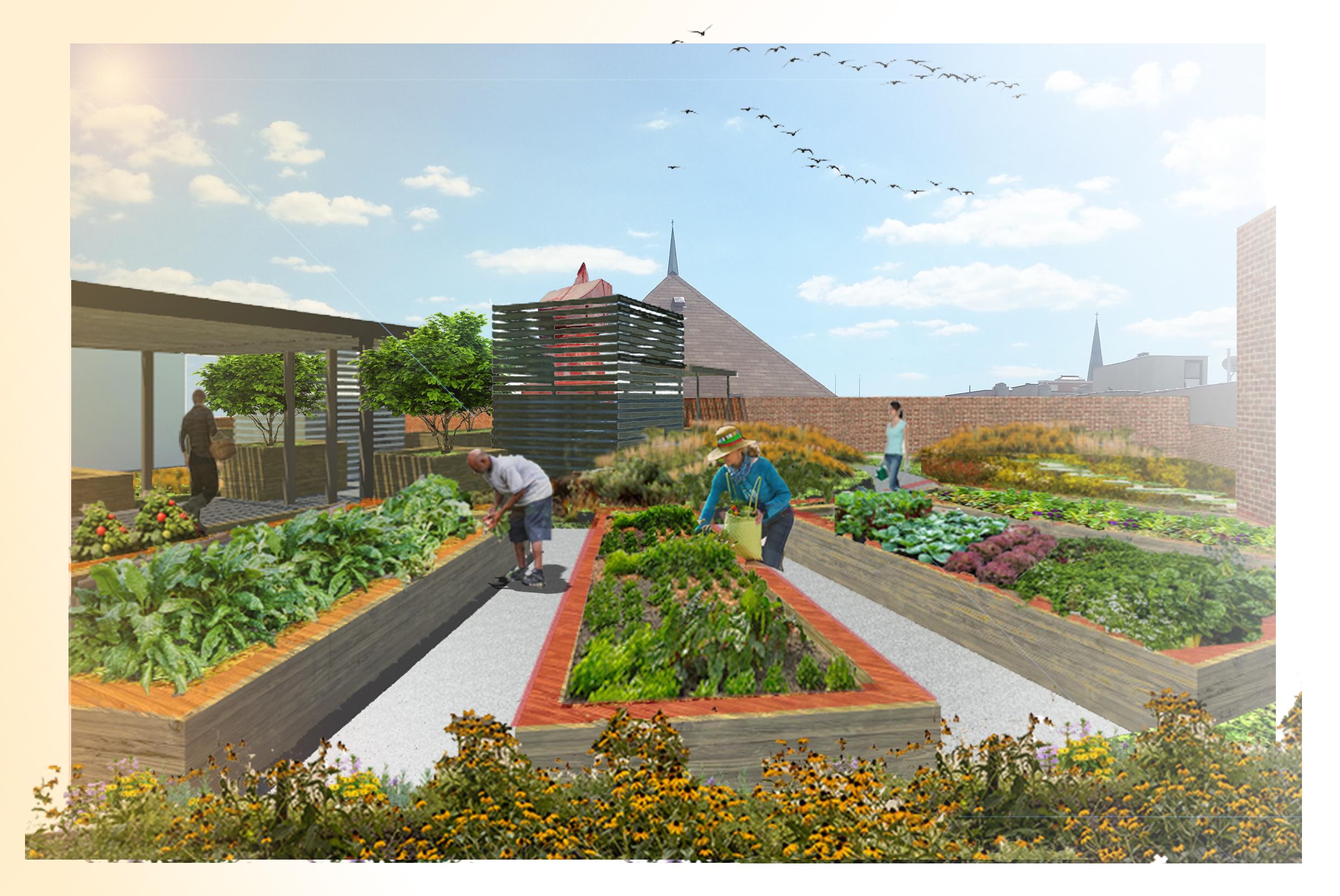 PSC- gardenscene21